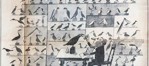 Zeichnung Marie Marcks